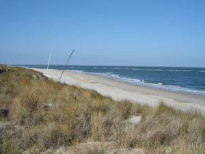 homes for sale norfolk va and virginia beach va